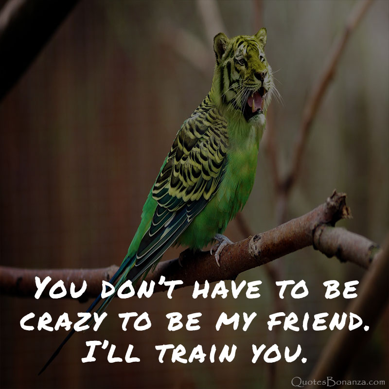 funny-best-friend-quotes