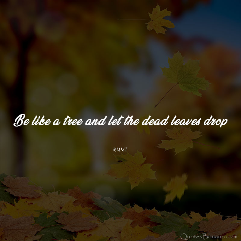 be-like-a-tree-and-let-the-dead-leaves-drop-rumi-quote