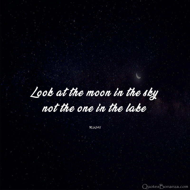 look at the moon in the sky not the one in the lake - rumi